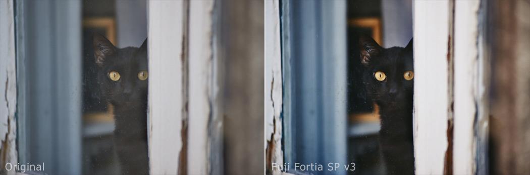 Fuji Fortia SP v3